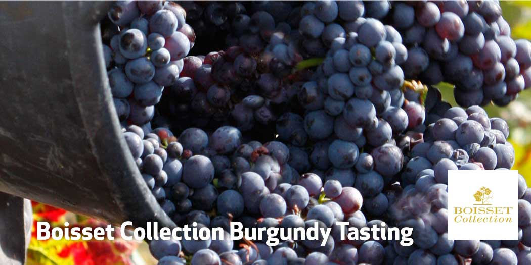 Boisset Collection Burgundy Tasting